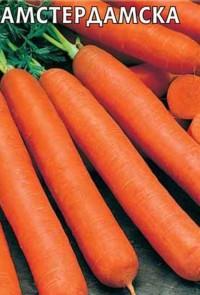 Морковь Амстердамка