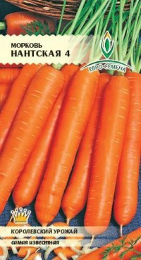 Морковь Нанская 4